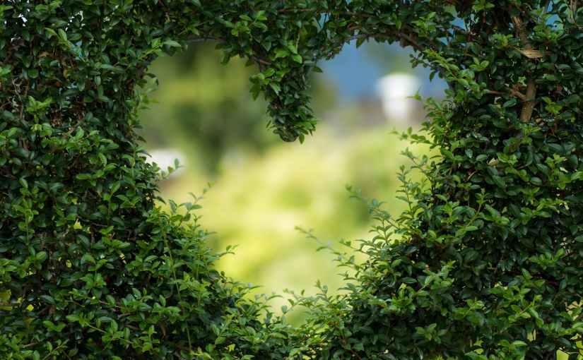 Valentine's life provides model of holylove